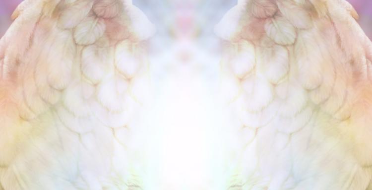 Joy Andreasen Angels