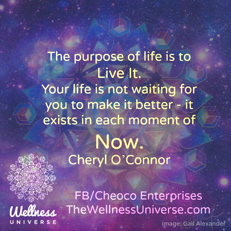 The Wellness Universe Quote of the Day by Cheryl O'Connor 95b