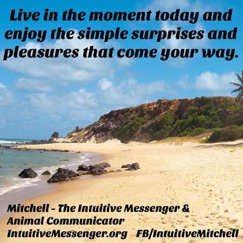 The Wellness Universe Motivational Monda Top 10 Mitchell O 5.11
