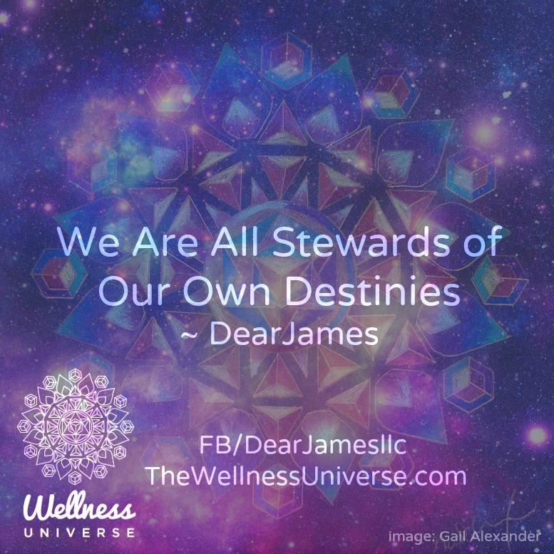 Dear James WU 13