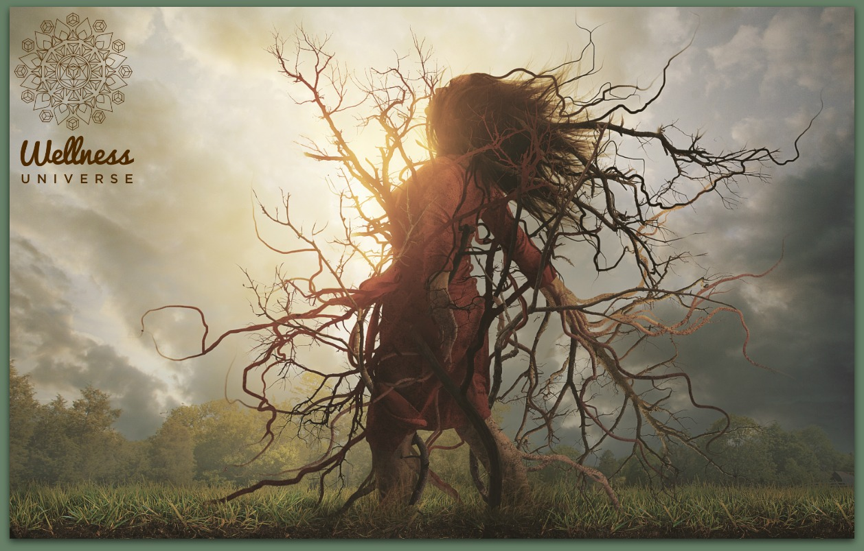 Feel the Heal: See the Dirt by Laura Probert #TheWellnessUniverse #WUVIP #FeelTheHeal