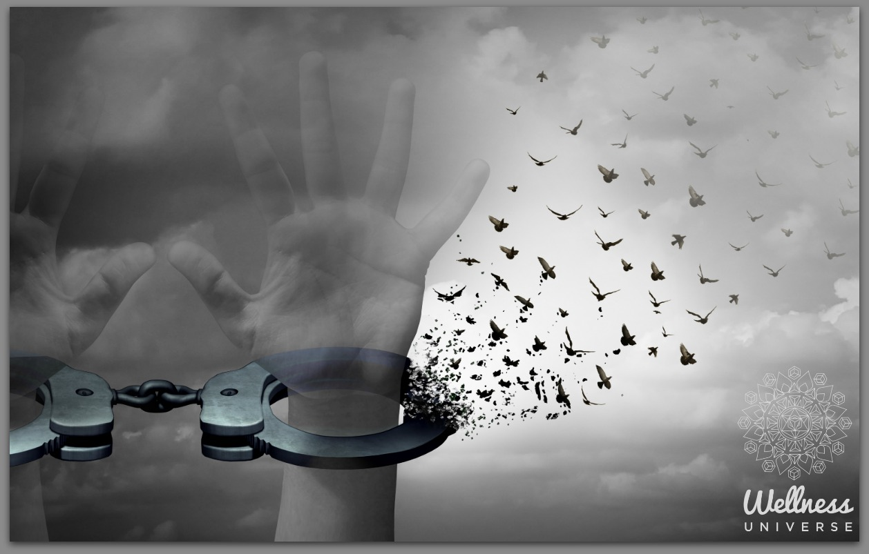 The Choice of Forgiveness by Elizabeth Kipp #TheWellnessUniverse #WUVIP #ChoiceOfForgiveness