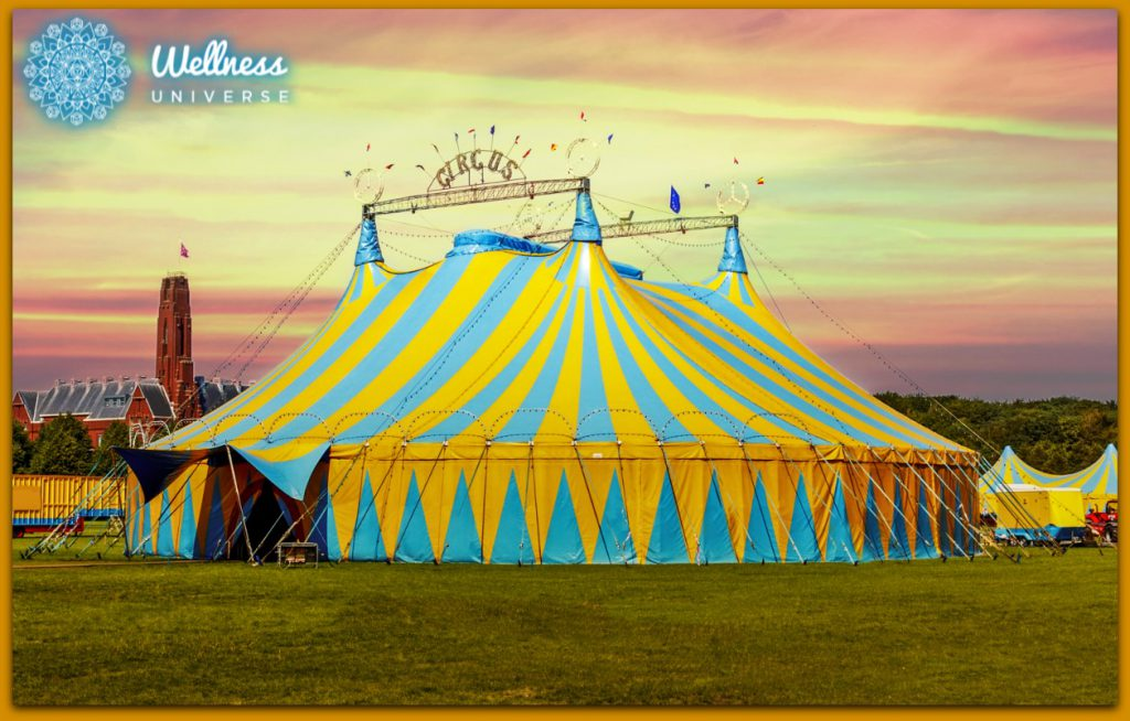 5 Ways Life After Corporate is Like Joining the Circus by Lisa Dadd #TheWellnessUniverse #WUVIP #Circus