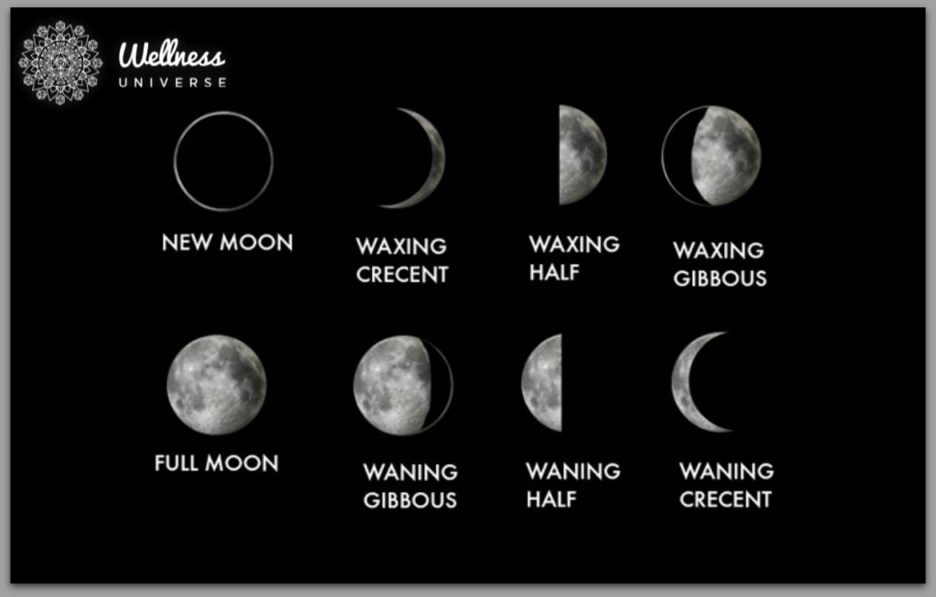 Understanding Our 8 Moon Cycles by Jenny Tasker #TheWellnessUniverse #WUVIP #MoonCycles