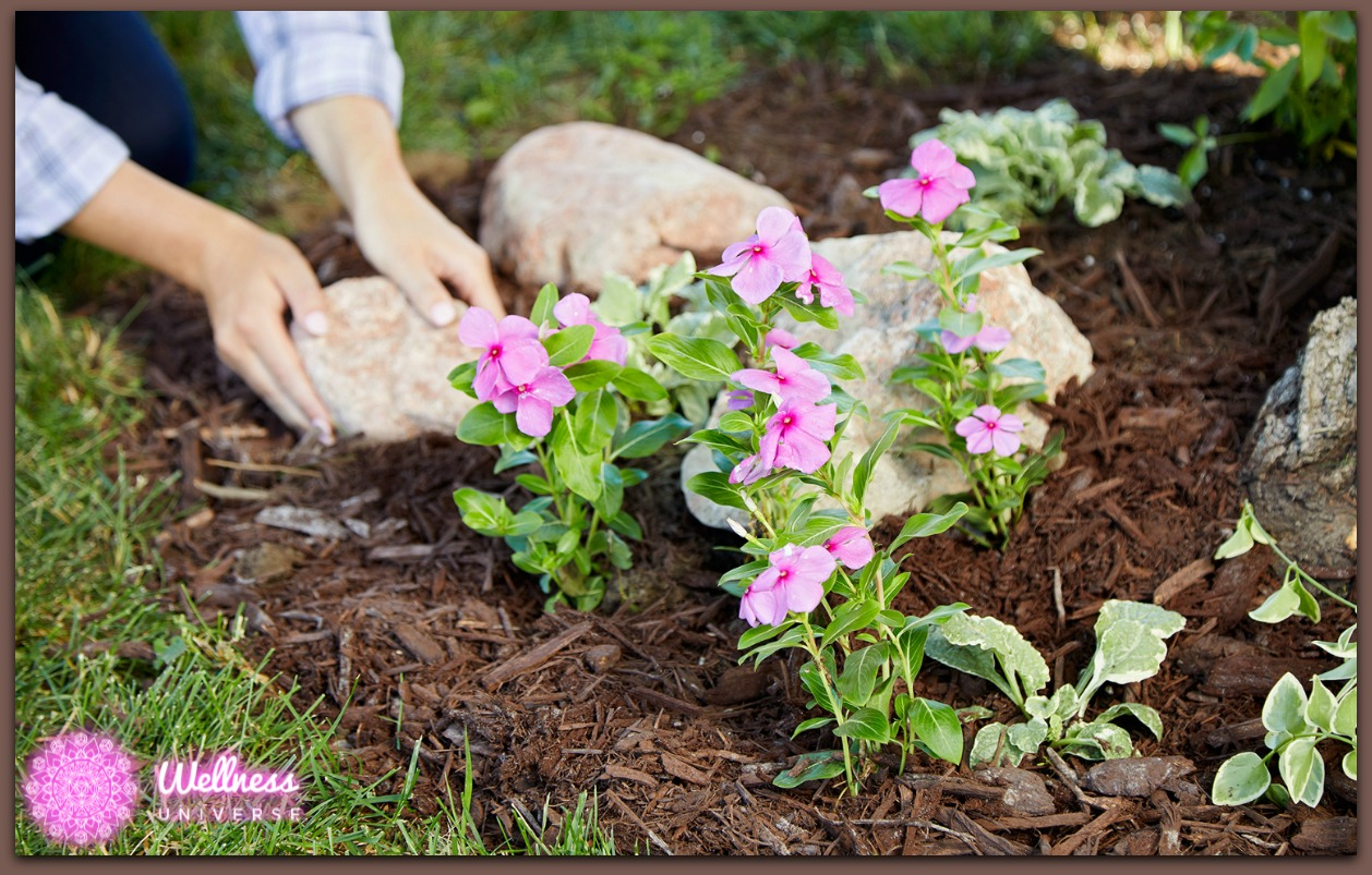 4 Popular Types of Mulch and Their Benefits by Jennifer Pries #TheWellnessUniverse #WUVIP #WUWorldChanger #Mulch #EarthDay
