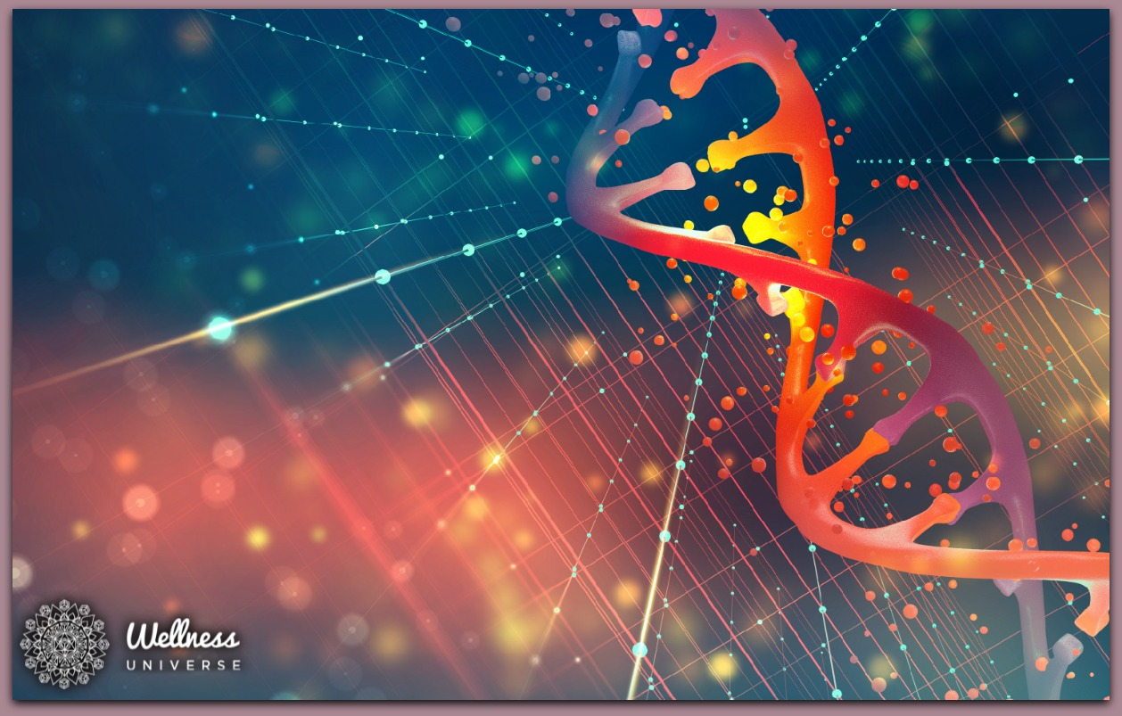 Epigenetics: Healing Emotional Trauma from Your Lineage by Elizabeth Kipp #TheWellnessUniverse #WUVIP #Epigenetics #AncestralClearing #EmotionalTrauma