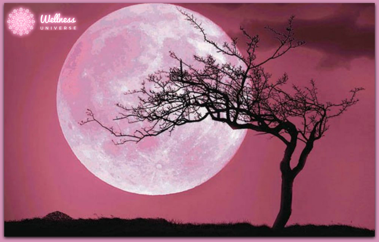 The Full Pink Moon - April 2019 by The Wellness Universe #WUVIP #WUWorldChanger #TheWellnessUniverse #FullMoon #PinkMoon #April
